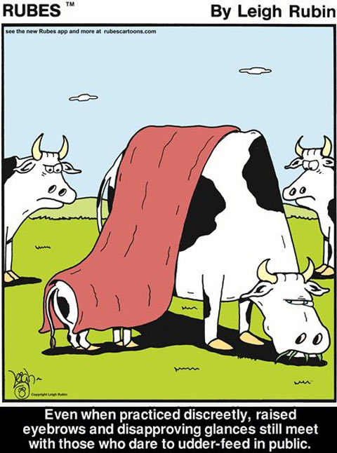 funny-cow-feeding-baby-comic1